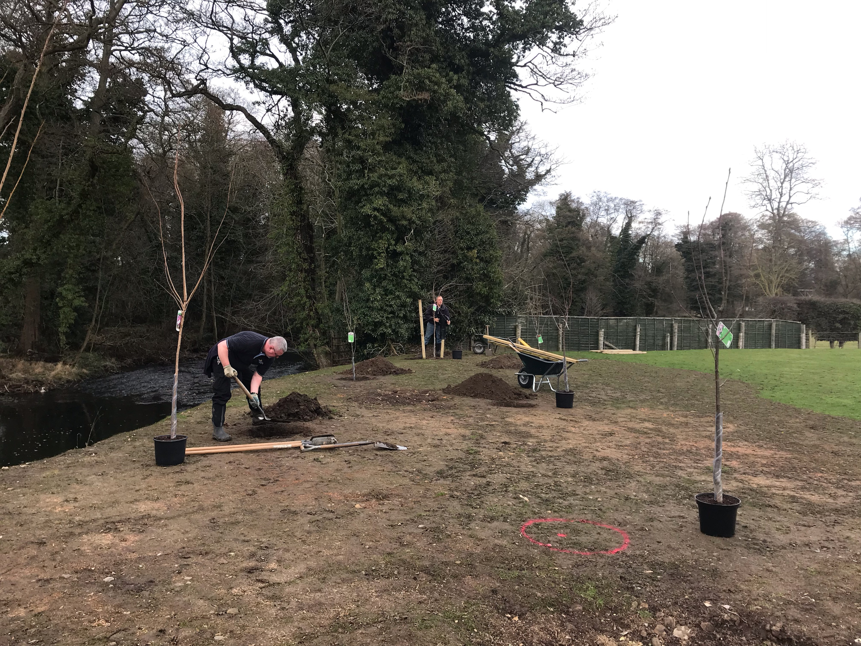 5th March  - New Trees!