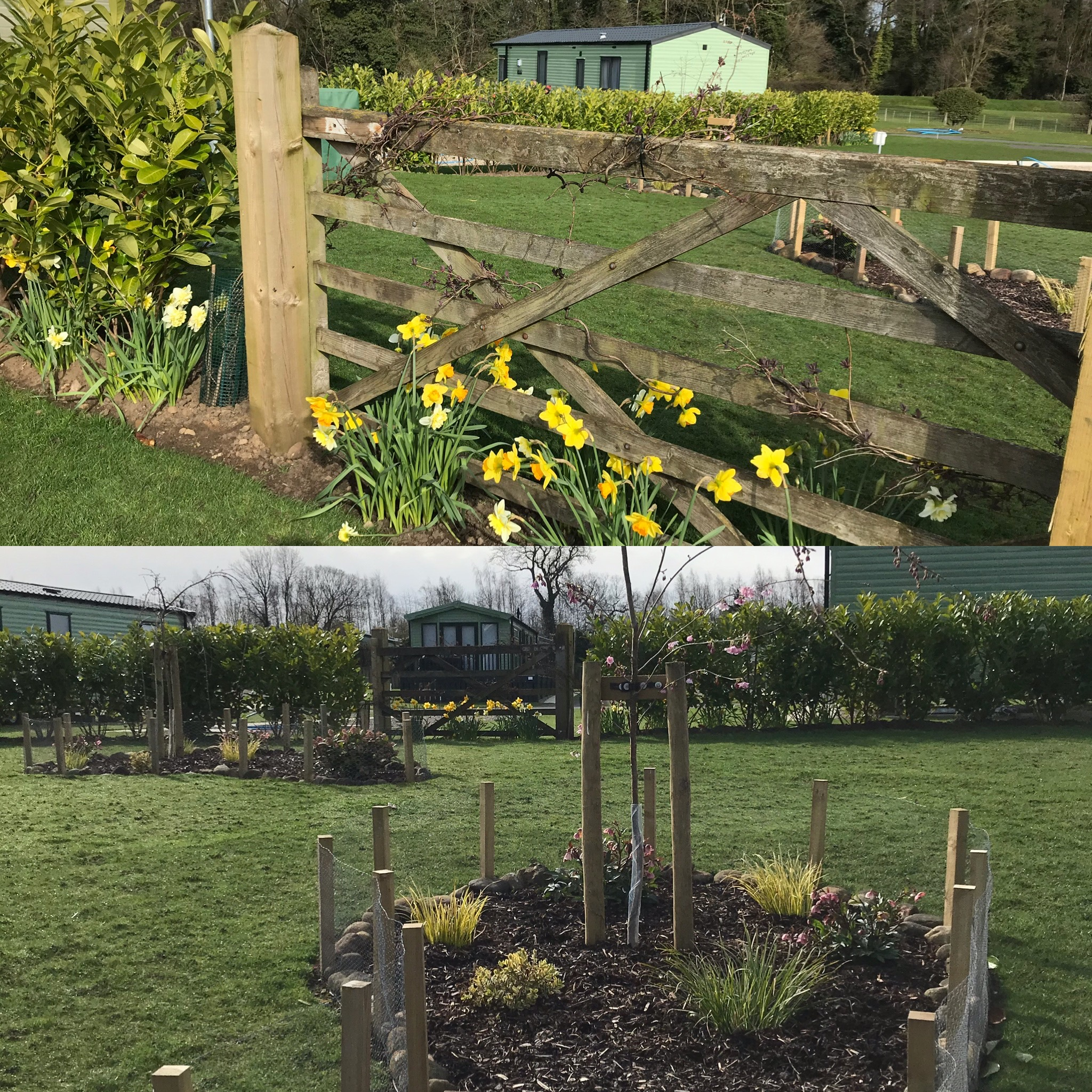 March 19th 2020 - Lovely Gardens!